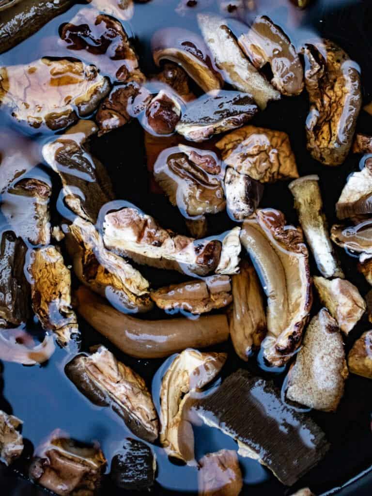 Porcini mushrooms in water.