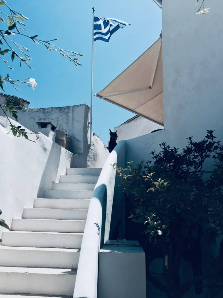 A white outdoors staircase in a house, a dog some plants and a Greek flag.