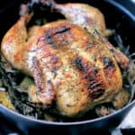 A chicken seasoned with fresh herbs in a black dutch oven.
