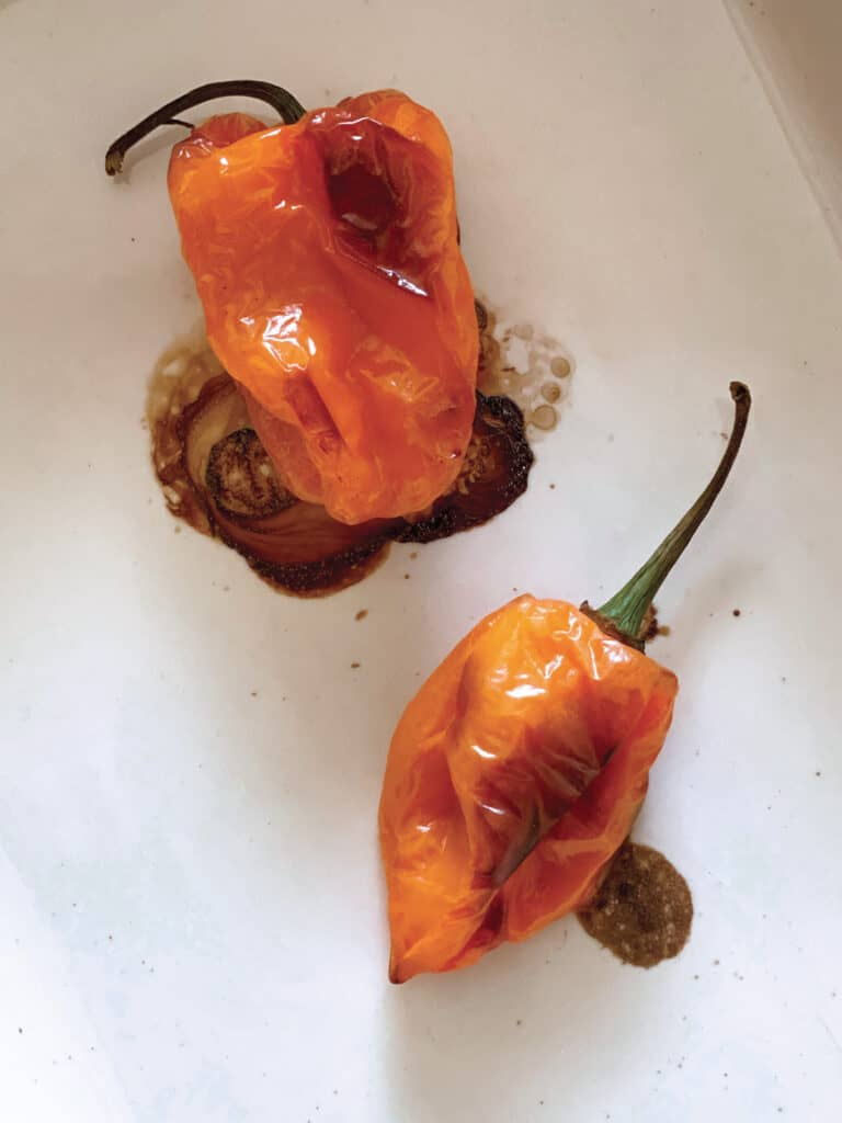 Two roasted jalapeño peppers in a white pan.